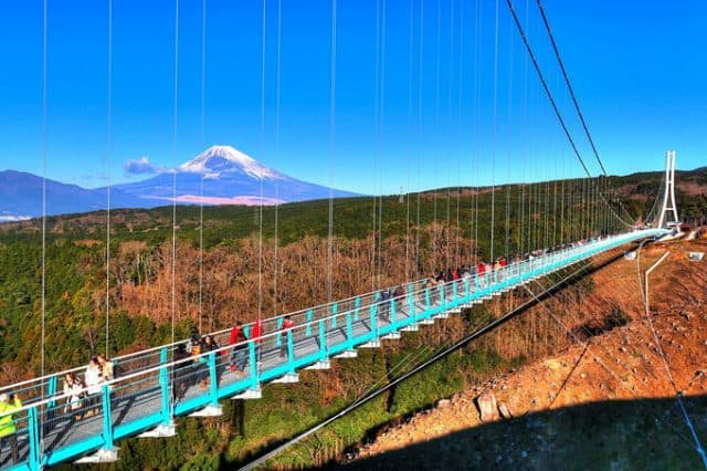 Mt. Fuji and Mishima Skywalk