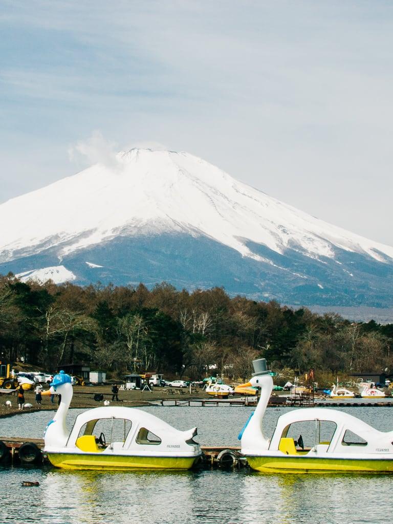 While waiting for our bike rental in Lake Yamanaka