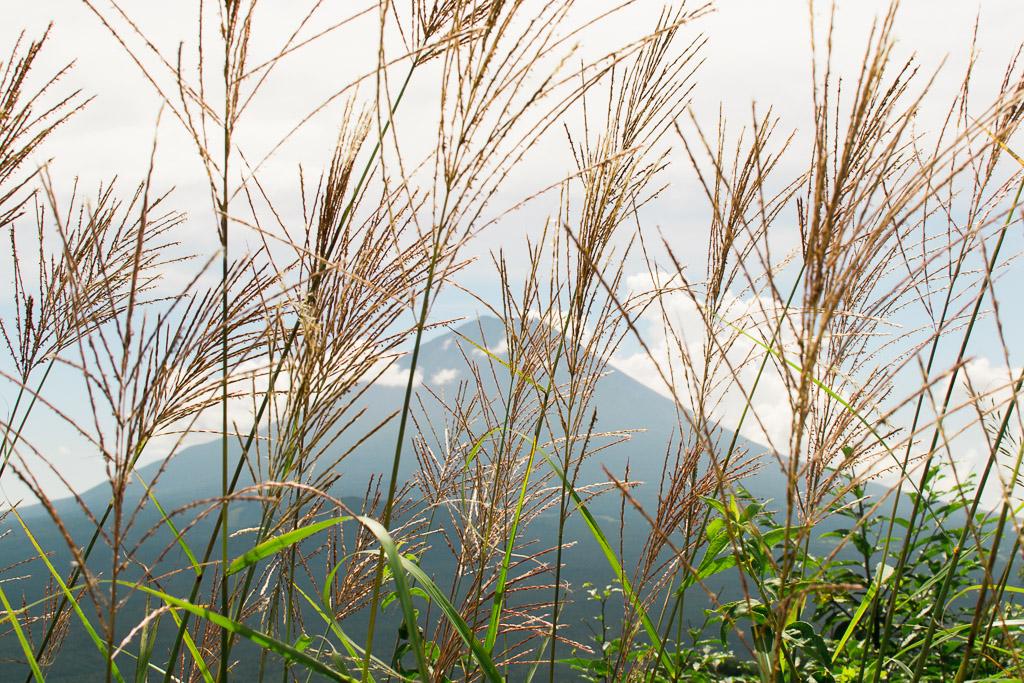 The hike to Panorama Dai and the Panoramic View of Mt Fuji