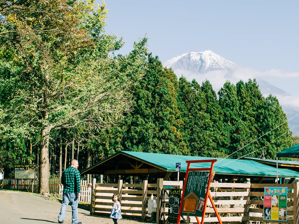 Makaino Farm Dude Ranch with the beautiful view of Mount fuji