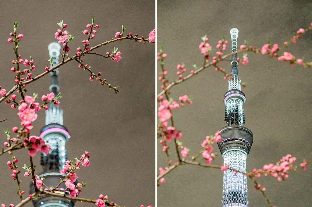 Tokyo Skytree is more enjoyable from the outside