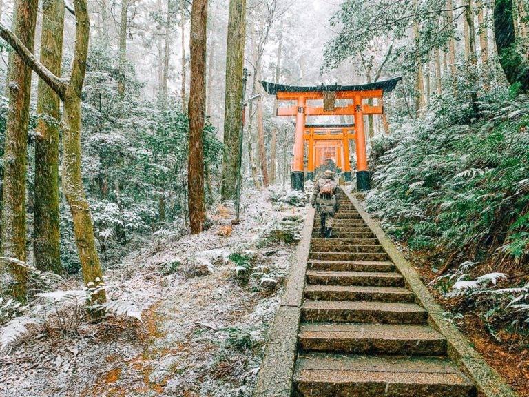 Tour Package to Japan