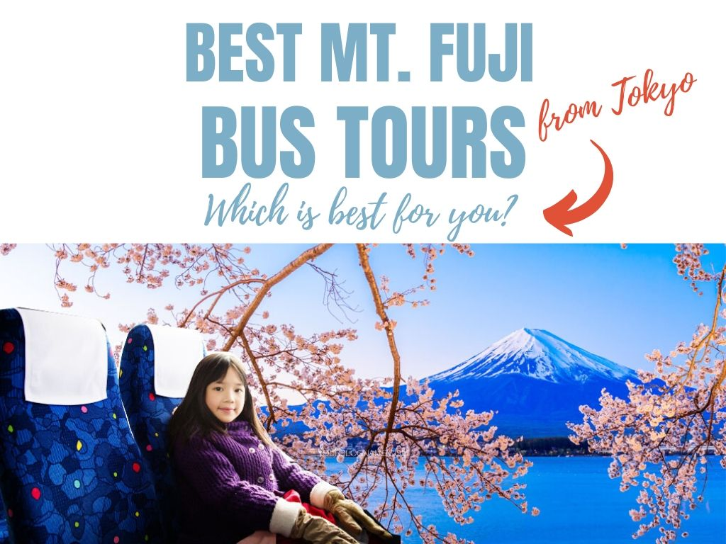 Best Mt Fuji Bus Tours from Tokyo