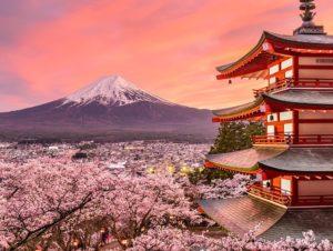 Chureito Pagoda near Lake Kawaguchi during cherry blossoms