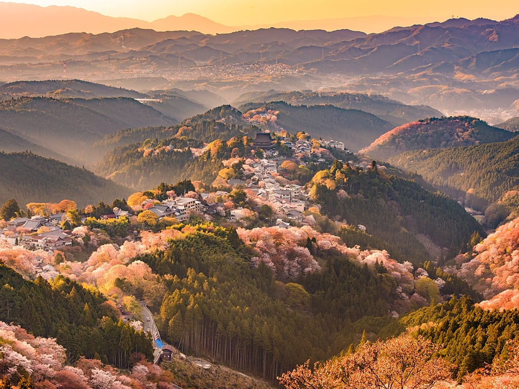 Mount Yoshino in Nara during cherry blossoms